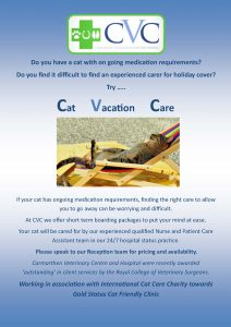 Cat Vacation Care